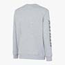 SWEATSHIRT%20FALCON%20II%2C%20LIGHT%20MIDDLE%20GREY%20MELANGE%2C%20small