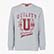 SWEATSHIRT GRAPHIC, LIGHT MIDDLE GREY MELANGE , swatch